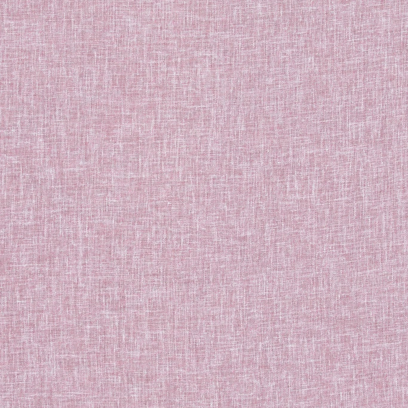 Midori Lilac